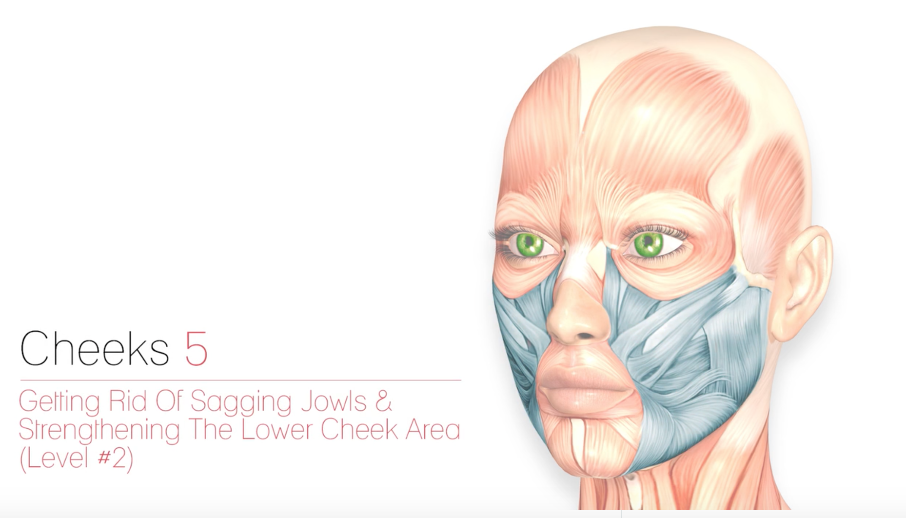 Cheeks 5 – Getting Rid of Sagging Jowls (Level 2)