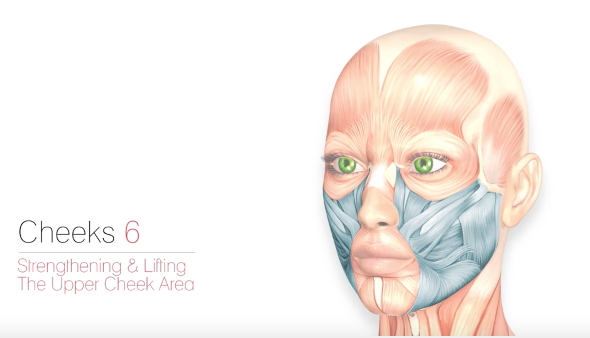 Cheeks 6 – Strengthening & Lifting The Upper Cheek Area